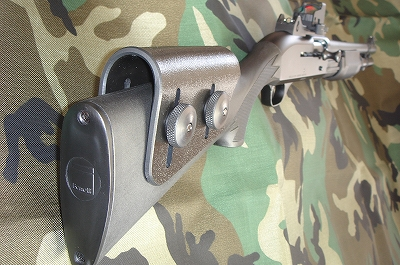 DWP-1.jpg